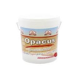 GDM OPACUS ES2 BASE BT LT. 13